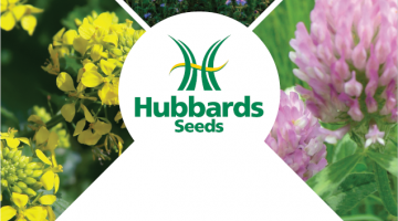 Cover Crops from Hubbards Seeds